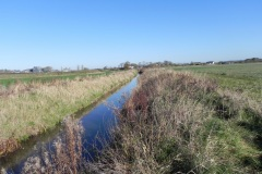25.-River-view-downstream-from-Cary-Fitzpaine-Bridge