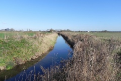 27.-River-view-downstream-from-Cary-Fitzpaine-Bridge