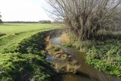 37.-Looking-downstream-from-Lytes-Cary-Footbridge