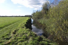 39.-River-view-downstream-from-Lytes-Cary-Footbridge