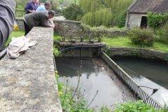 5.-Gants-Mill-Mill-Stream-Trashrack