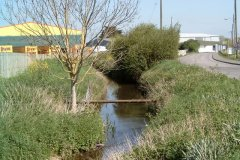 30.-Looking-upstream-near-Timber-Yard