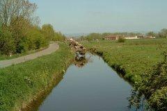 49.-Looking-Downstream-from-Dyehouse-Lane-Iron-Bridge