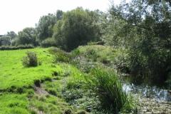 18.-Downstream-from-Somerton-Fishponds-Footbridge