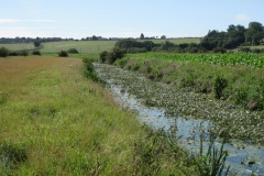 19.-Downstream-from-Somerton-Fishponds-Footbridge-1