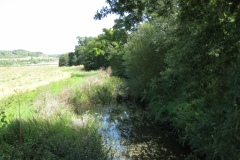 4.-Cary-Bridge-Looking-Upstream