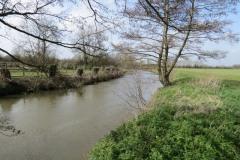 7.-Downstream-from-Coombe-Bridge-1