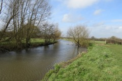 8.-Upstream-from-Thorney-Mill-4