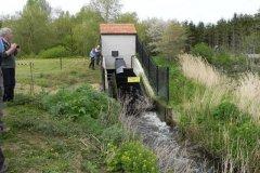 10.-Hainbury-Mill-Archimedes-Screw