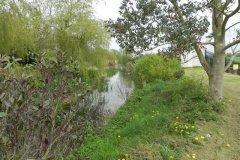 12.-Hainbury-Mill-Mill-Stream