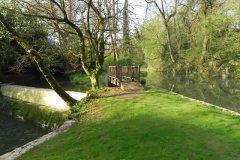1.-Hapsford-Mill-Mill-Stream-Start