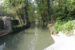 10.-Hapsford-Mill-Mill-Stream