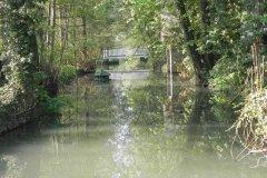 11.-Hapsford-Mill-Mill-Stream