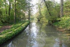 4.-Hapsford-Mill-Mill-Stream