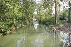 9.-Hapsford-Mill-Mill-Stream