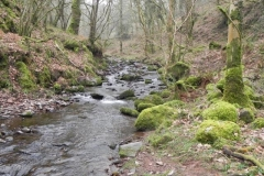 Hollow Combe to Confluence with Horner Water