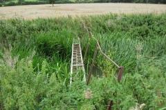 13.-Etsome-Farm-Footbridge2-Looking-Downstream
