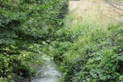 6.-Etsome-Bridge-Looking-Downstream