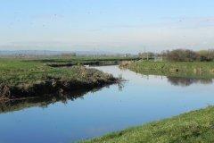 13.-Downstream-from-Langport-Rail-Bridge