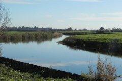 16.-Downstream-from-Langport-Rail-Bridge