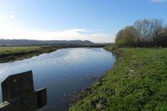 19.-Downstream-from-Langport-Rail-Bridge