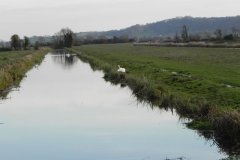 16.-Langacre-Rhyne-looking-upstream-from-Bimpit-Lane-Bridge