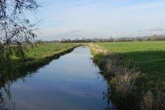 9.-Langacre-Rhyne-looking-downstream-from-Grey-Lake-Farm-Bridge