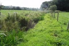11. Downstream from  Muddymoor Copse