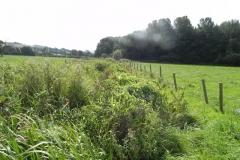 13. Downstream from  Muddymoor Copse