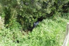 14. Upstream from Binham Farm Accommodation Bridge