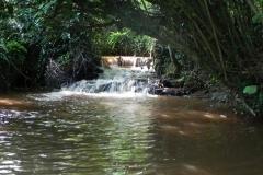 2. Muddymoor Copse Weir