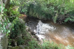 21. Weir downstream from Binham Farm Accommodation Bridge