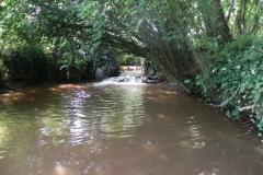 3. Muddymoor Copse Weir