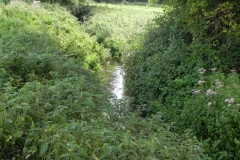 31. Flowing past Horse Parks