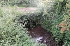 34. Horse Parks accommodation bridge
