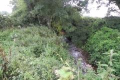 35. Flowing through Home Farm