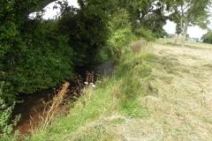 36. Flowing through Home Farm