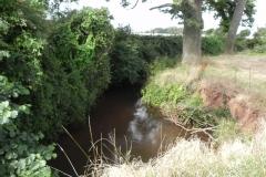 37. Flowing through Home Farm