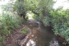 39. Flowing through Home Farm