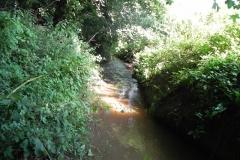 4. Looking downstream from Muddymoor Copse Weir