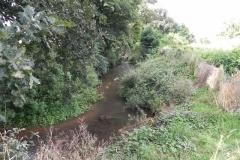 43. Flowing through Home Farm