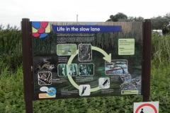 44. Reeds Bed Sign Pill Copse Caravan Park