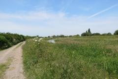 10.-Downstream-from-Millwood-Farm-1