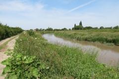 10.-Downstream-from-Millwood-Farm-2