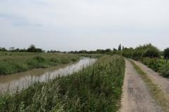 10.-Downstream-from-Millwood-Farm-3