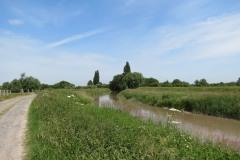 10.-Downstream-from-Millwood-Farm-4