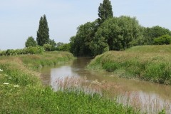 10.-Downstream-from-Millwood-Farm-5