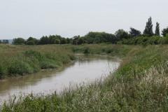 10.-Downstream-from-Millwood-Farm-6