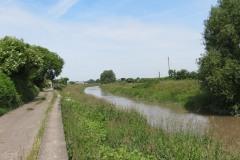 10.-Downstream-from-Millwood-Farm-7