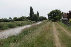 11.-Upstream-from-Westonzoyland-Pumping-Station-1